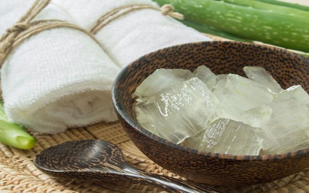 Cinco formas de incluir aloe vera en tu dieta